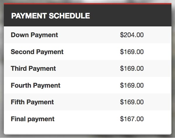 Safe Auto Payment Schedule Table