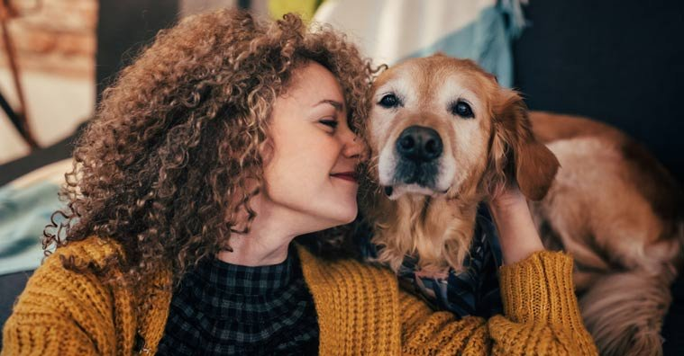 CBD Oil for Dogs: Benefits, Potential Side Effects and Research Studies