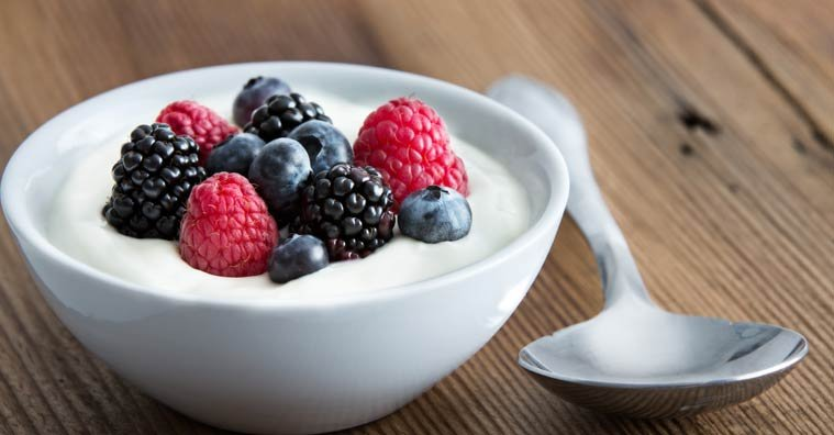Probiotics 101: A Beginner's Guide