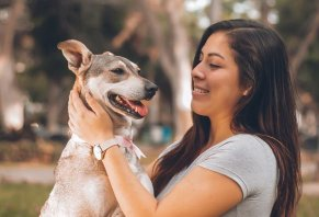 Dog Supplements 101: A Detailed Beginner's Guide