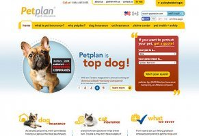 petplan pet insurance reviews is it a scam or legit?petplan pet insurance
