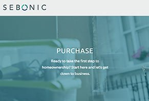 Sebonic Financial