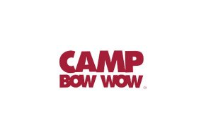 Camp Bow Wow Review: Is It the Right Option for Your Dog?