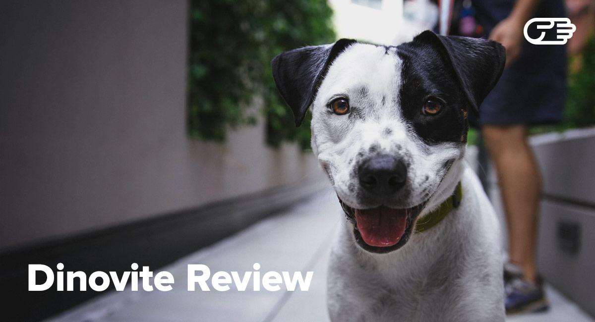 Dinovite Reviews - Is It Worth It?